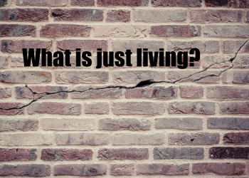 whatisjustliving
